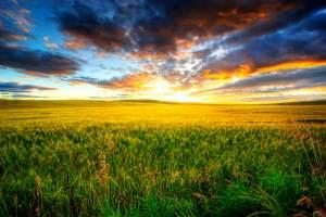 Prairie-Canada